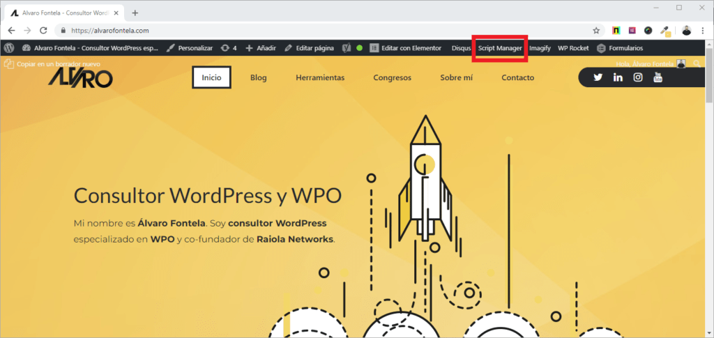 perfmatters wordpress